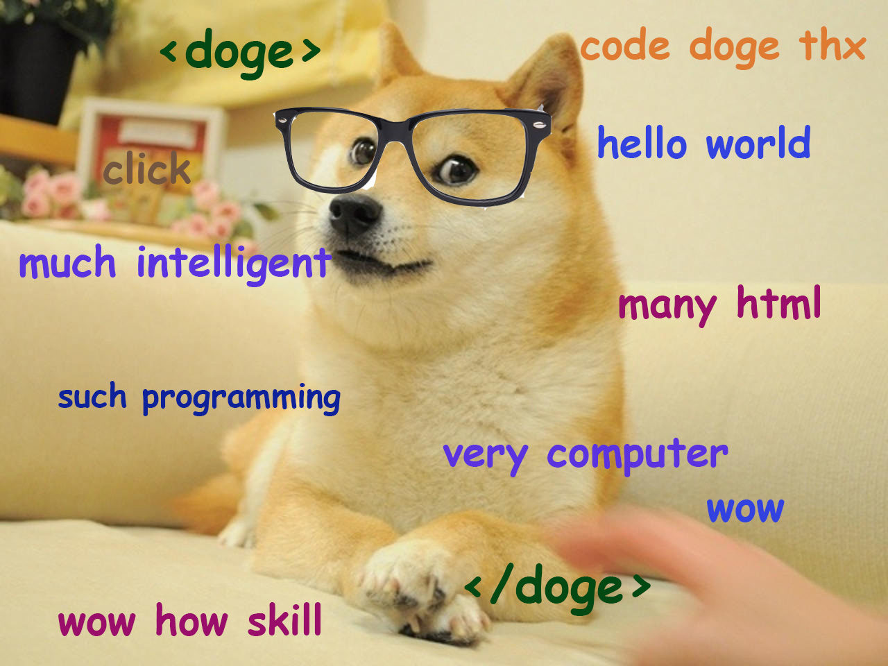 Web Developer Doge 💻 | Doge Much Wow