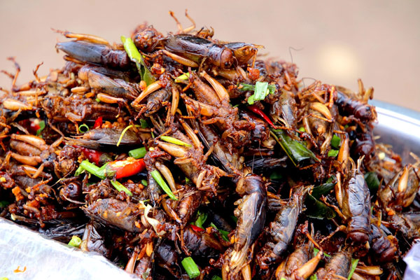 Cursed Food Image: A colorful bug salad. What is it? Crickets?